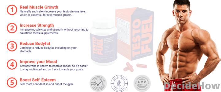 testofuel benefits